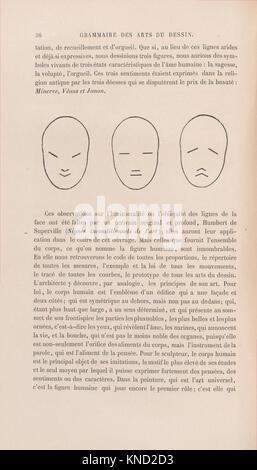 Grammaire des arts du dessin - architecture, sculpture, peinture MET DP-1122 02 726673 Author: Charles Blanc, French, - Stock Photo