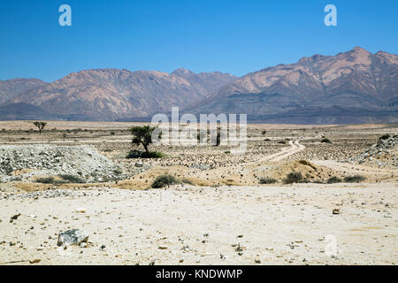 white landscape with trees and mountains in damaraland Namibia - Stock Photo