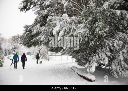 People in Kings Heath Park head out to enjoy the heavy snow fall on Sunday 10th December 2017 in Birmingham, United - Stock Photo