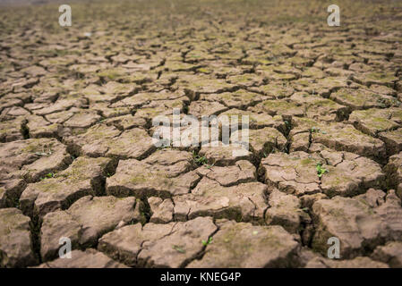 View of dried cracked mud in Nanchang,China. - Stock Photo