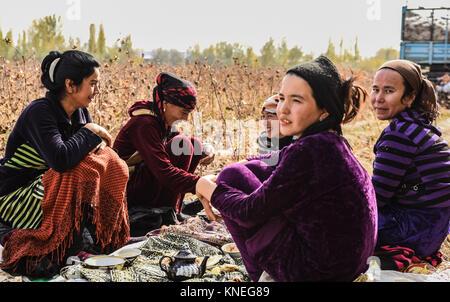 Cotton pickers in the Khiva countryside, Xorazm Region, Uzbekistan, October 28, 2017    Credit © Jacopo Casaro/Sintesi/Alamy - Stock Photo