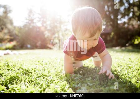 Baby boy crawling on grass - Stock Photo