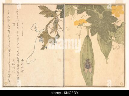 Grasshopper (Kirigirisu); Cicada (Semi), from the Picture Book of Crawling Creatures (Ehon mushi erami). Artist: - Stock Photo