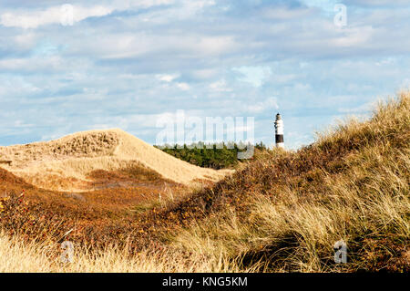 Dunes on the island of Sylt (Germany): Dünen auf Sylt - Stock Photo