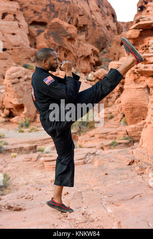 Male Practicing Martial Arts Kick In Park Setting Front