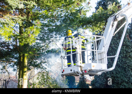 Firefighters in action clear the fallen trees after a windy storm. - Stock Photo