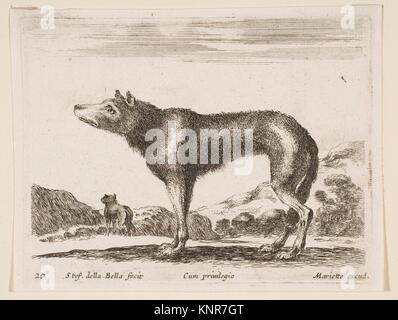Plate 20: wolf, from 'Various animals' (Diversi animali). Series/Portfolio: 'Various animals' (Diversi animali); - Stock Photo