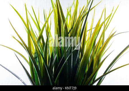 Artificial Grass Plastic Green Light Isolated White Background Decoration - Stock Photo