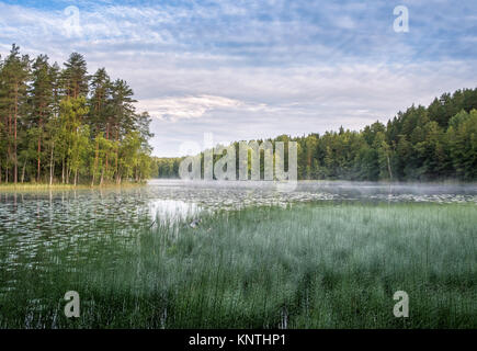 Peaceful morning mood with scenic lake view at autumn in Nuuksio National park, Finland - Stock Photo