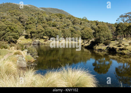 Trout fisherman on the banks of the Thredbo River at Thredbo Diggings in Kosciuszko National Park in the Snowy Mountains - Stock Photo