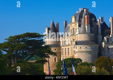 Brissac Castle, Brissac-Quince, Angers District, Maine-et-Loire department, Pays de la Loire, Loire Valley, UNESCO - Stock Photo