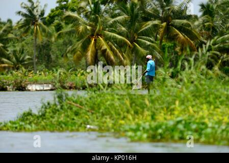 Fisherman in the Backwaters of Kerala, Allepey, Kerala state, India - Stock Photo
