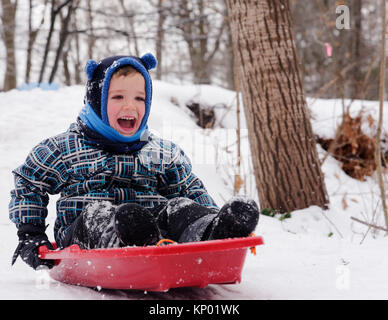 A little boy laughing as he slides on his sledge in Quebec in winter - Stock Photo