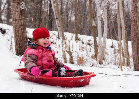 A laughing little girl (3 yr old) sledging in Quebec - Stock Photo