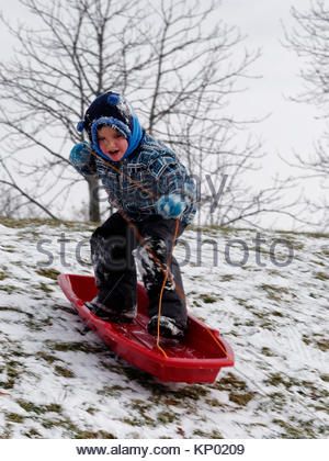 A little boy (5 yr old) snowboarding by standing in his sledge going down a slope. - Stock Photo