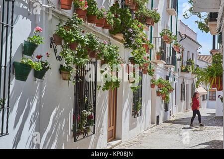 Flowerpots in Barrio de la Villa (old quarter), Priego de Cordoba, Sierra de la Subbetica, Route of the Caliphate, - Stock Photo