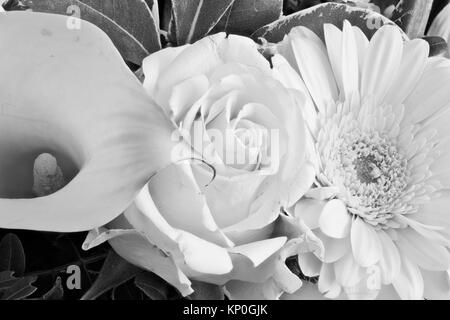 Detailed  floral monochrome color macro of a calla, rose and gerbera with detailed texture - Stock Photo