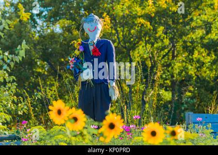 smiling scarecrow in garden