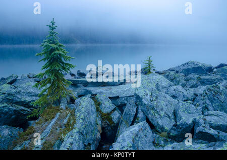Fog obscures the mountains, Lake O'Hara, Yoho National Park, British Columbia, Canada - Stock Photo