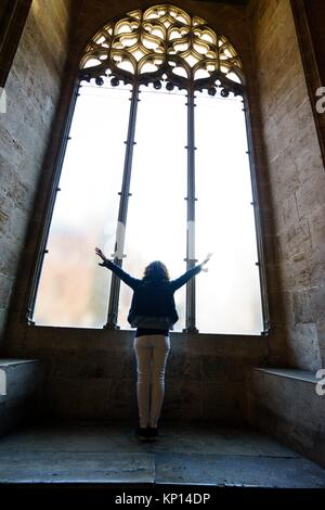 Tourist with the sign of victory in one of the windows of the Long of the Silk, Valencia, Spain - Stock Photo