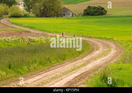 Farm road, Whitman County, Washington. - Stock Photo