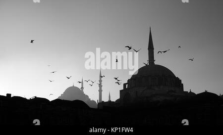 Black and white Mosque silhouette in Istanbul Turkey - Stock Photo