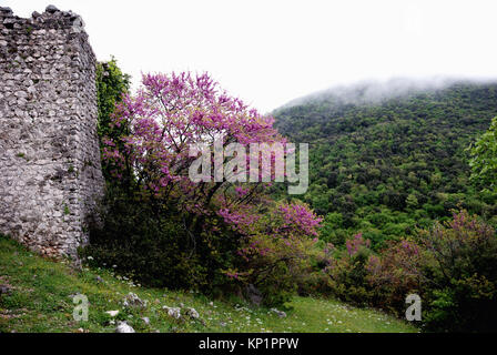 Ruins of the medieval town of Castiglione, built on a hill near Palombara Sabina, Italy - Stock Photo