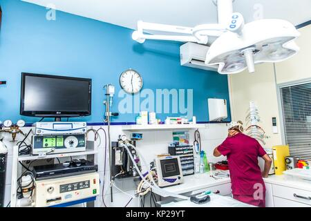 vet working in an operating theater - Stock Photo