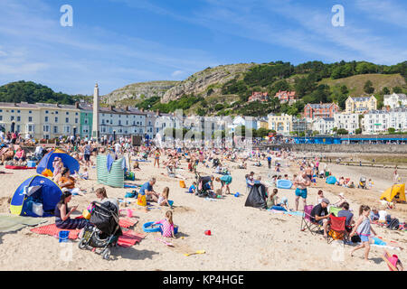 north wales llandudno north wales Llandudno beach holidaymakers adults and children playing on the beach Llandudno - Stock Photo