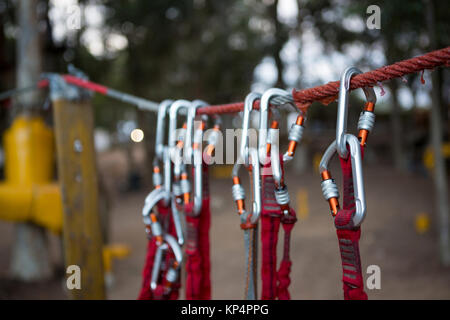 Close-up of harnesses hanging on rope in the forest - Stock Photo
