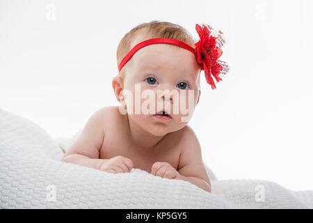 Baby, 2 Monate alt - baby , 2 month old - Stock Photo