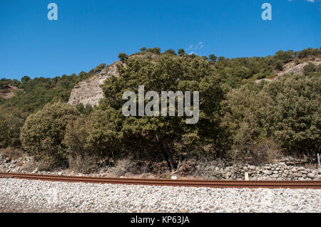 Corsica: the wild landscape of the inland with view of the train tracks crossing the Asco Valley, called the High Centre of Corsica