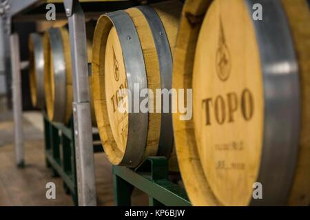 Whisky barrels stored in a distillery warehouse. They are lined up and full of alcohol. - Stock Photo