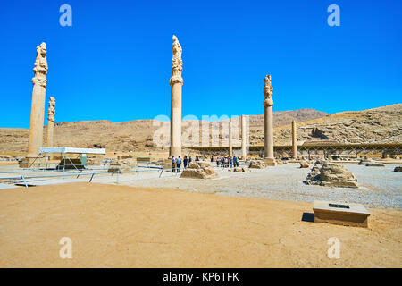 PERSEPOLIS, IRAN - OCTOBER 13, 2017: The archaeological site of Apadana with preserved slender columns on the flat - Stock Photo