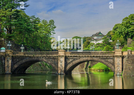 Tokyo Imperial Palace Outer Gardens with the famous Nijubashi Bridge and a swan - Stock Photo