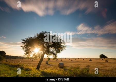 Felder im Licht mit Schatten und Wolken,Sonnenstrahlen,Wolken über Landschaft