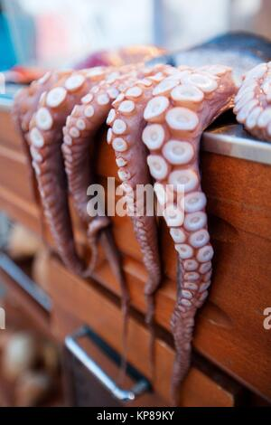 Octopus hanging at the entrance of the restaurant in town center, Naxos, Cyclades Islands, Greek Islands, Greece, - Stock Photo