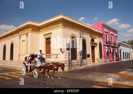 Horse carriage in front of the colonial buildings in the city center, Merida, Riviera Maya, Yucatan Province, Mexico, - Stock Photo