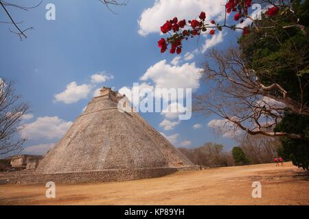 View to the Pyramid of the Magician in prehispanic Mayan city of Uxmal Archaeological Site, Yucatan Province, Mexico, - Stock Photo