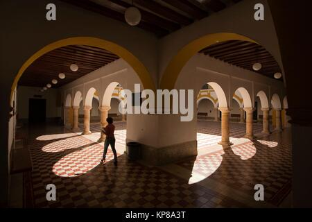 Silhouette of a woman inside the Campeche Institute, Campeche City, Campeche State, Mexico, Central America - Stock Photo