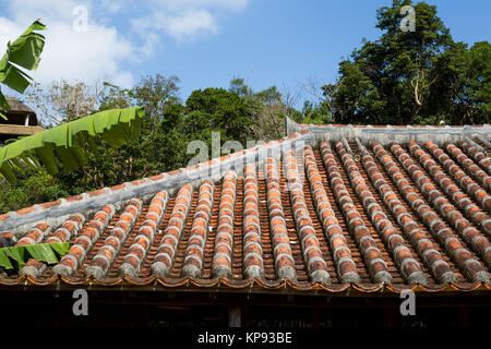 attic vs asiatic When it comes to a japanese beetle vs ladybug, homeowners should know  as  they make their way out from your attic, walls and baseboards.