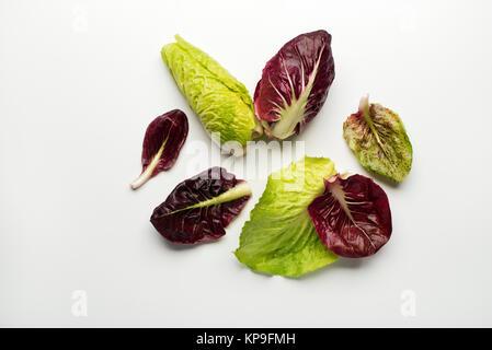 Salad leaves - Stock Photo