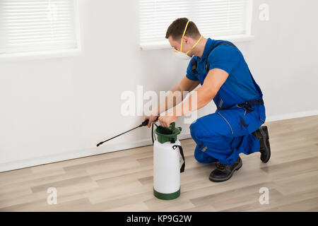 Worker Spraying Pesticide On Wall At Home - Stock Photo