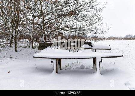 Wooden bench covered in fresh snow with trees in the background - Stock Photo