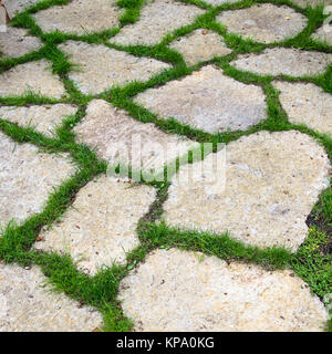 Track of the limestone slabs in the garden - Stock Photo