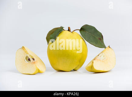 quinces isolated on the white background - Stock Photo