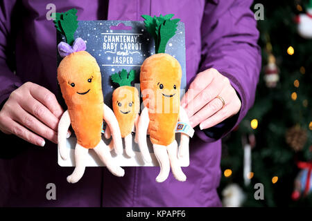 Bristol, UK. 14th Dec, 2017. Aldi's Carrot family plush toys went on sale in the UK today. Kevin and Katies offspring, Chantenay, Jasper and Baby Carrot were on the shelves first thing this morning. Queues formed outside Aldi stores before they opened and shoppers joined in store 'scrums' to try and get their hands on the latest additions Credit: Stephen Hyde/Alamy Live News