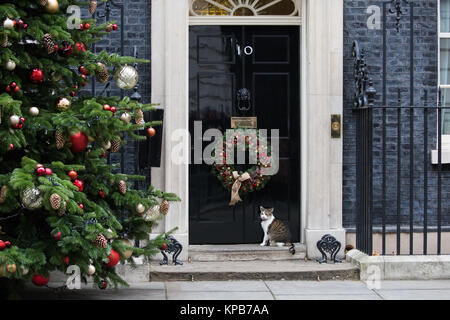 London, UK. 5th December, 2017. Larry, the Downing Street cat, sits outside No. 10 during the Cabinet meeting. - Stock Photo