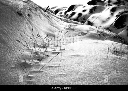 Wild winter landscape at sunrise in black and white. - Stock Photo