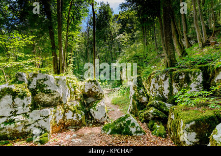 Mithraic temple (Mithraeum II century) situated in chestnut forest above Rozanec, Bela Krajina (White Carniola) - Stock Photo